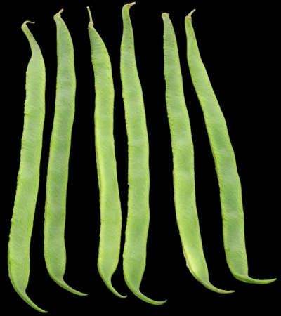 Six Runner beans, isolated on black photo