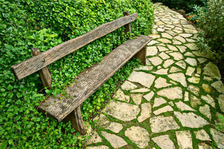garden path: Overgrown weathered wooden bench at the side of a paved garden path