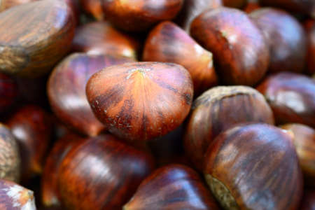 Heap of sweet chestnuts, with selective focus on central nut
