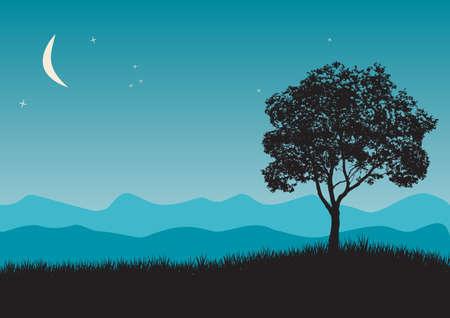 rural skyline: Tree in night scene illustrations Illustration