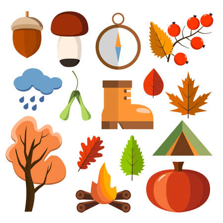 cartoon hedgehog: Flat forest icon set. Autumn forest flat icons. Simple and cute icons for your design. Vector design. Illustration