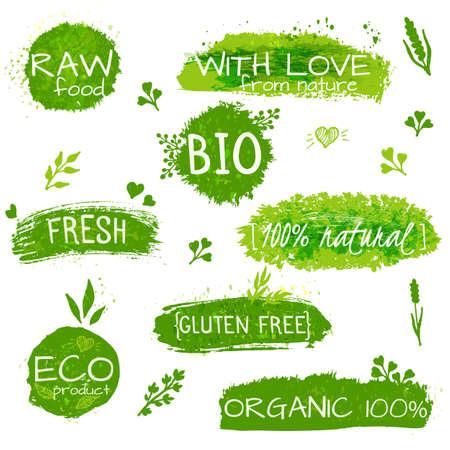 productos naturales: Conjunto de logotipos, sellos, insignias, etiquetas para productos ecológicos naturales, granjas, orgánico. elementos florales y textura sucia. , colores pastel verdes Vectores