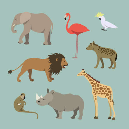 safari: Vector Set Of Different African Animals. Animals of the African savanah lioness, elephant, rhinoceros, giraffe, flamingo, monkey, hyena illustration Vector