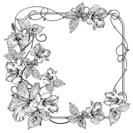 Clematis flower. Vintage elegant flowers. Black and white vector illustration. Botany.
