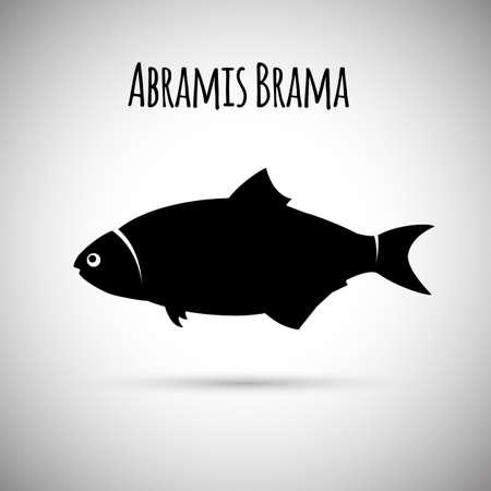 common carp: Abramis brama fish