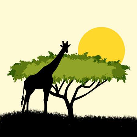 giraffe silhouette: Acacia tree and giraffe silhouette concept design.