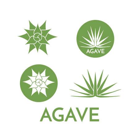 agave: logotipo de la flor verde colorida ilustración vectorial planta de agave, set simbolo