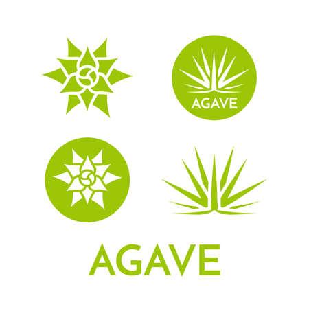 Agave plant green flower logo colorful vector illustration, symbol set Illustration