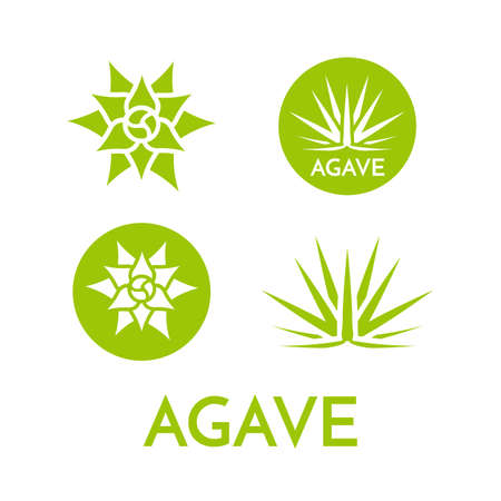Agave plant green flower logo colorful vector illustration, symbol set Vectores