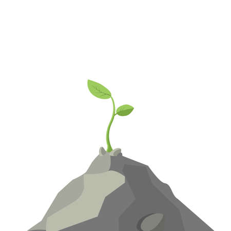breaking the rules: The plant is growing on a rock, colorful vector flat illustration Illustration
