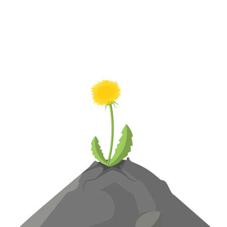 daring: The plant is growing on a rock, colorful vector flat illustration Illustration