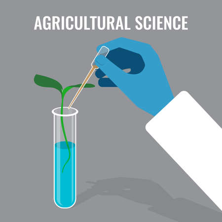 researcher: Agricultural science concept showing sprout in glass tube, colorful flat vector illustration