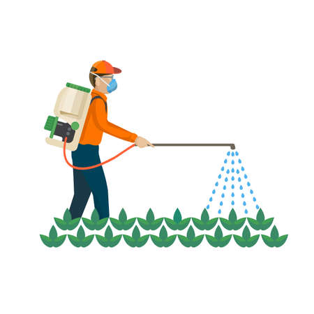 agricultural life: Agricultural chemicals are spayed by farmer over the plants, colorful vector flat illustration Illustration