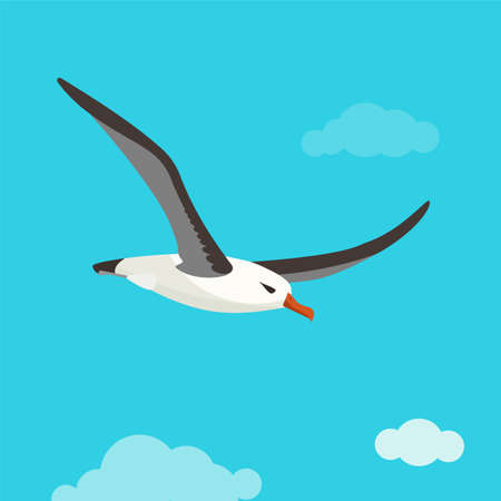 albatross: Albatross bird is flying in cloudy sky. Colorful vector flat illustration.