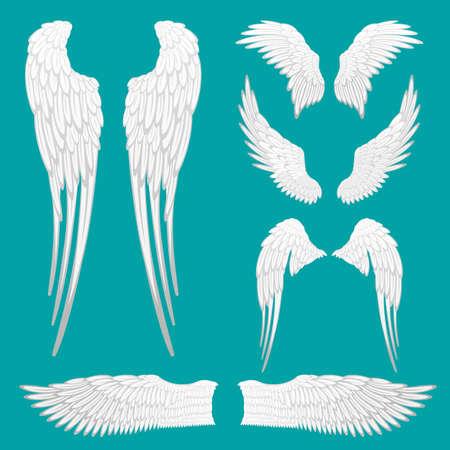 白い天使の羽が分離を設定します。タトゥーやマスコットのデザインの紋章翼を設定します。さまざまな形の鳥の羽だった。抽象的な天使の翼スケ
