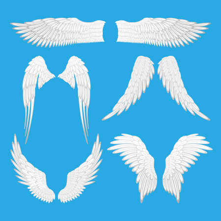 wings bird: Angel wings vector illustration. Set of angel, eagle bird wings isolated editable elements. Graphic animal abstract wings of different shapes. Tattoo fantasy icons. Decoration for Valentines day.