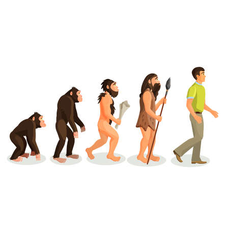 sapien: Evolution ape to man process isolated. Evolutionary led to emergence of anatomically modern humans. Physical anthropology, primatology, paleontology, evolutionary psychology, genetic concepts. Vector