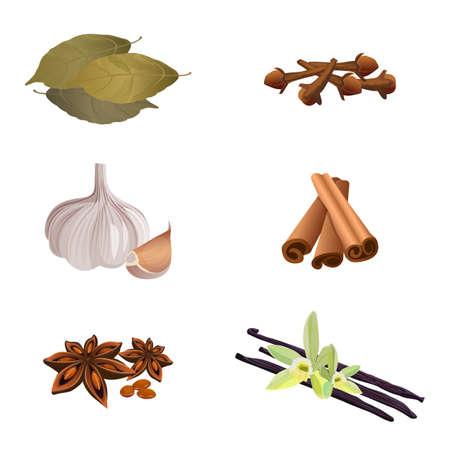 Garlic , cinnamon sticks, dried cloves, bay leaves, anise star, vanilla