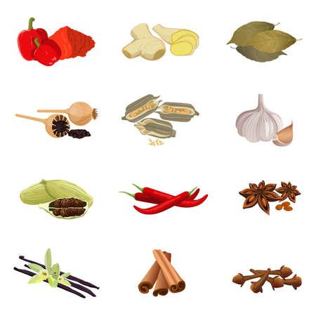 ajonjoli: Pimentón, jengibre, laurel, amapola, sésamo, ajo, pimienta, anís, vainilla Vectores