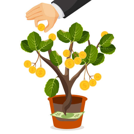 Money tree with golden coins. Assets useful or valuable thing growing in a pot from dollar banknote. Hands collect money from tree. Financial deposits business concept. Realistic vector illustration Illustration