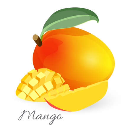 Exotic mango tropical fruit with green leaf sliced and whole Illustration