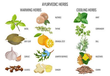 Ayurvedic warming and cooling herbs banner.