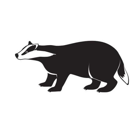 pelage: Badger on short legs isolated on white background. Illustration