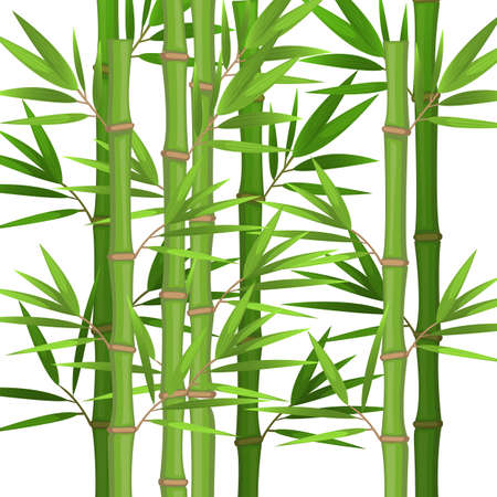 Stalks of bamboo with green leaves flat theme in realistic Vectores