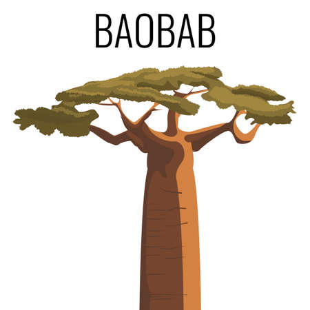African baobab tree icon emblem with text isolated on white