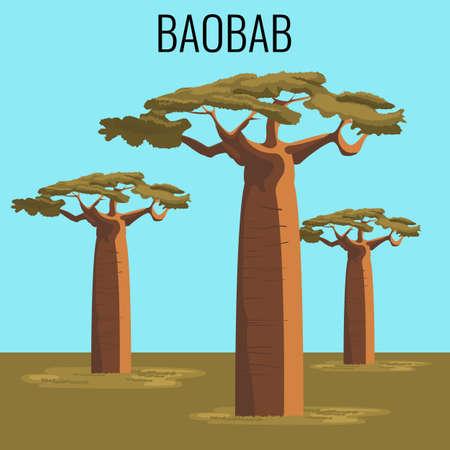 African baobab tree icon emblem