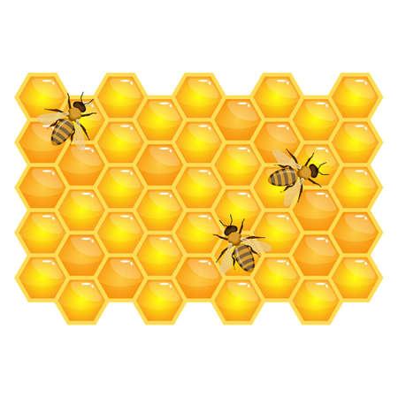 白い背景で隔離のハニカム構造に蜂。オーガニック蜂蜜ベクトル