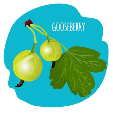 Gooseberry with green leaf on blue background. Edible fruit. Illustration