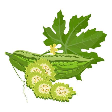 Bittere meloen kalebaspompoen of balsem-peer geheel en in plakjes