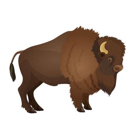 Bison large even-toed ungulate realistic vector illustration i