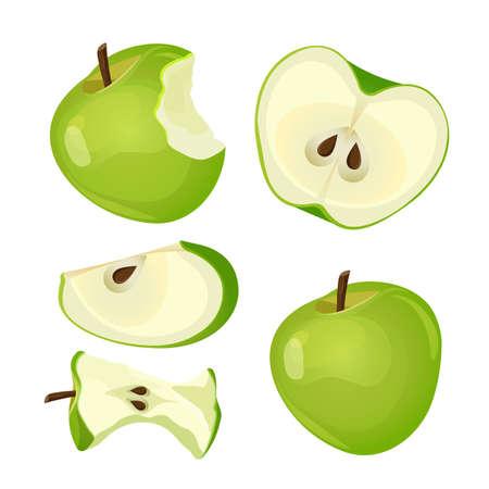 Bitten apple, whole, half and slice isolated on white background Illustration