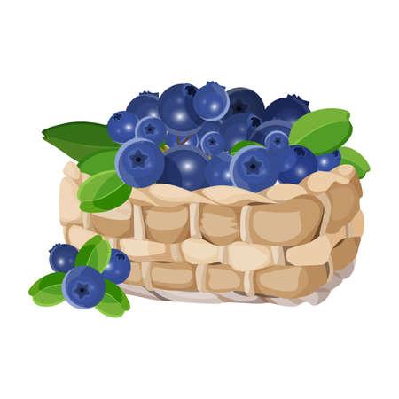 Weidenkorb mit der realistischen Vektorillustration der Blaubeeren lokalisiert auf Weiß. Blaue gesunde Beeren mit grünen Blättern