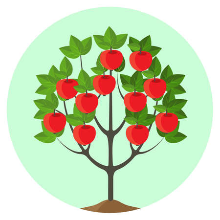 appletree: Apple tree with ripe fruits vector illustration in round button.