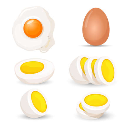 raw: Boiled eggs whole and half, fresh and fried realistic vector