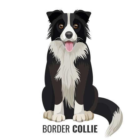 ボーダーコリー ペットは、以下のベクトル図の名前とに分離白を座っています。口を開けて大きな国内リアルな犬