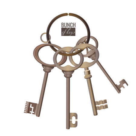Bunch of keys metal chrome decorative unlock steel elements isolated