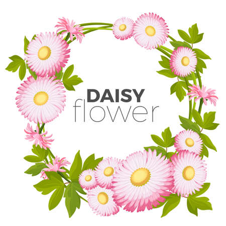 Daisy flowers frame with pink blossoms and green leaves vector Illustration