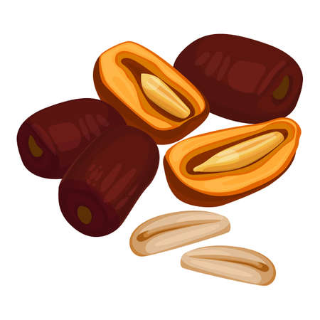 Delicious sweet healthy whole and half-cut date fruits Illustration