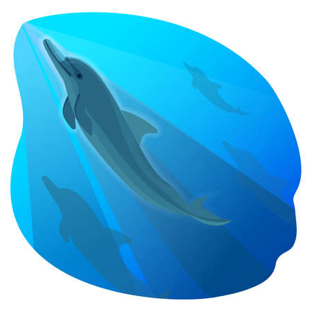 Playful dolphin swimming in blue deep sea and his friends