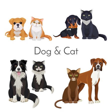 Dog and cat promotional poster with grown animal and babies illustration.