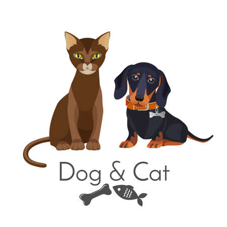 Dog and cat of pure breed promotional poster illustration.