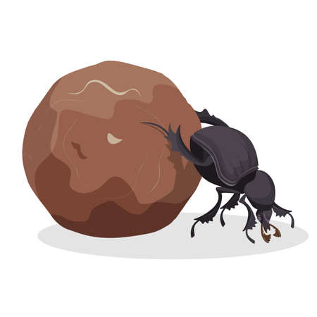 Big dung beetle that pushes big dirty ball. Small strong bug that collects mug. Funny creature from fauna world isolated cartoon flat vector illustration.