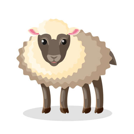 Adorable fluffy baby sheep with dark soft wool. Domestic animal with dark eyes and hooves. Farm pet with thick fur isolated cartoon vector illustration.