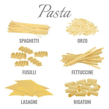 Pasta types spaghetti and orso set vector illustration