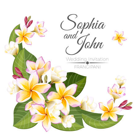 Sophia and John wedding invitation colorful celebration card Illustration