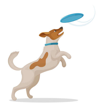 Jumping dog is catching a blue disc